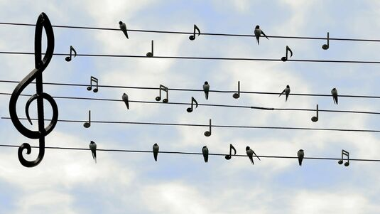 Harmonisch durch den Sommer
