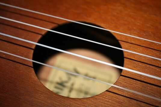 Swing your Ukulele